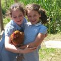 Two school children with a hen